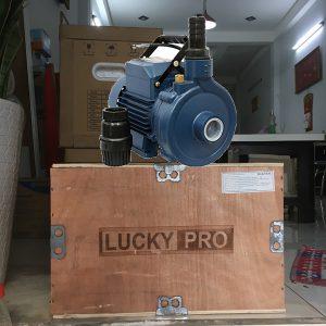 máy bơm luckypro 0.5Hp 1DK18